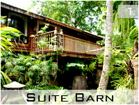 suite barn