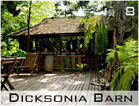 dicksonia barn